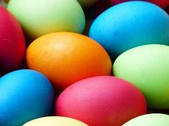 egg-100165__180